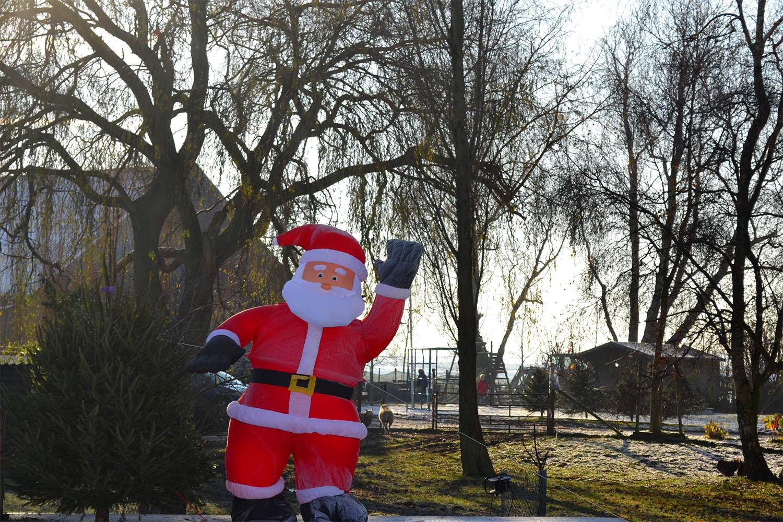 Nordmann Excellent kerstbomen Badhoevedorp