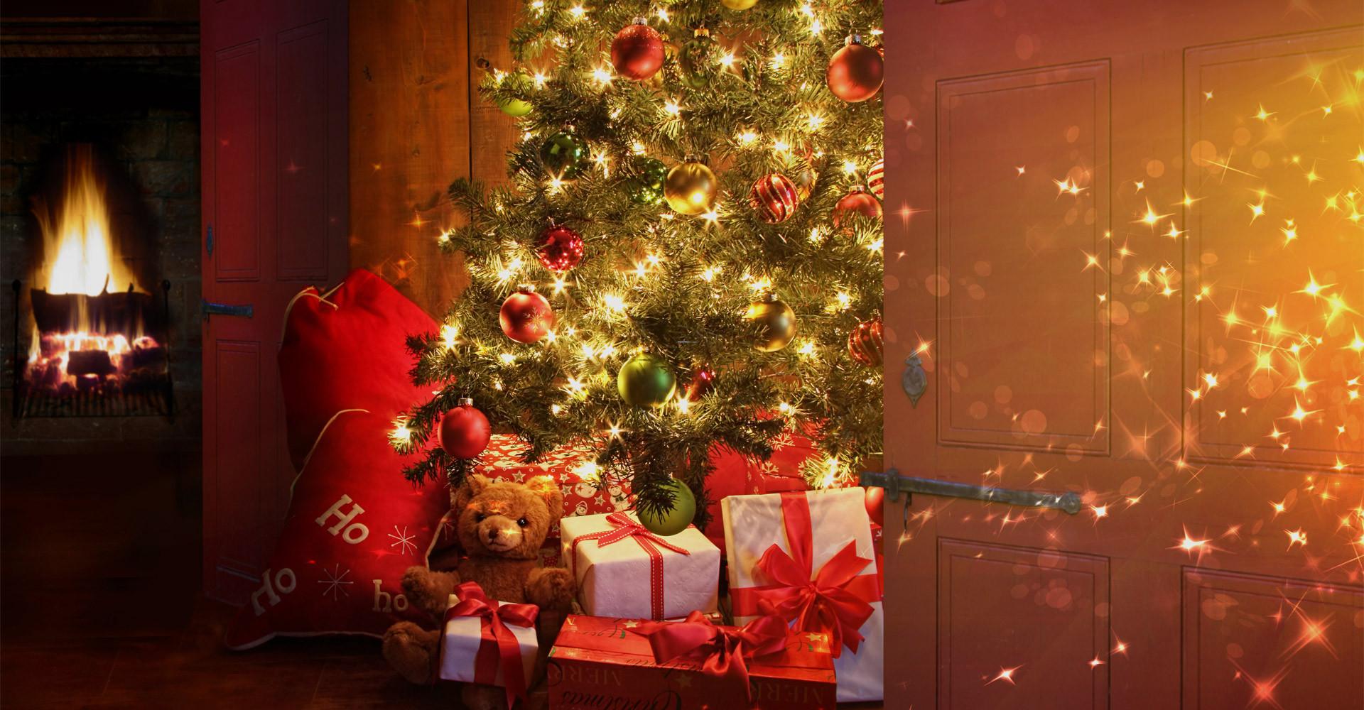 De mooiste Nordmann Excellent kerstbomen in Badhoevedorp vanaf € 15,-