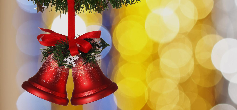 Veelgestelde vragen over Nordmann Excellent kerstbomen in Badhoevedorp